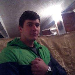 Михаил, 23 года, Сычевка