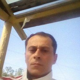 Армен, 44 года, Красноярск