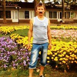АЛЕКСЕЙ, 60 лет, Краснодар