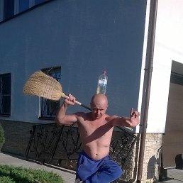 алексей, 35 лет, Пушкино