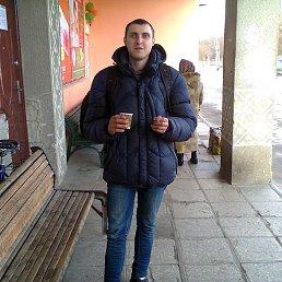Саша, 24 года, Андрушевка