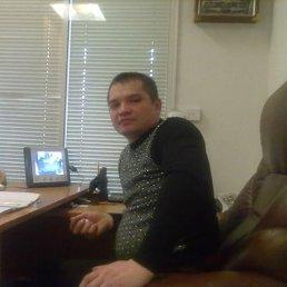 Владимир, 44 года, Карловка