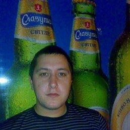 Дмитрий, 30 лет, Мелитополь