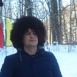 Дима, 30 лет, Пушкино