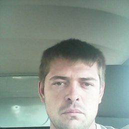 сергей, 33 года, Сахновщина