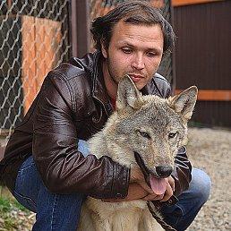 dima., 29 лет, Иркутск