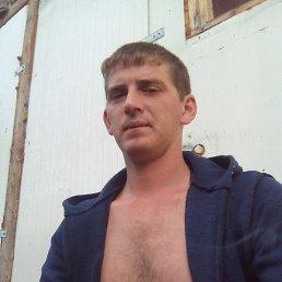 Андрей, 29 лет, Мокроус