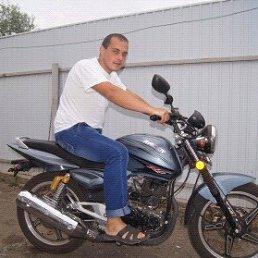 Руслан, 28 лет, Ракитное