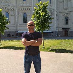 Сергей, 43 года, Бронницы