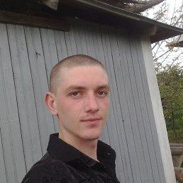 Коля, 24 года, Ивано-Франковск
