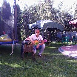 Стас, 37 лет, Красная Поляна
