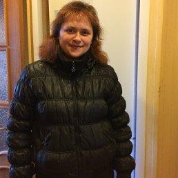 Елена, 42 года, Ивангород