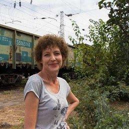 Галина Петренко, 56 лет, Тихорецк