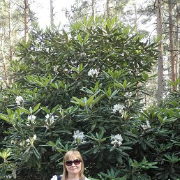 Инна, Светловодск, 53 года
