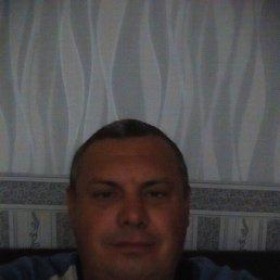 Сергей, 43 года, Тацинская