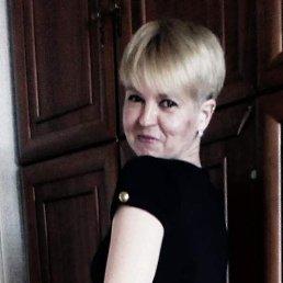 Елена, 36 лет, Дмитров