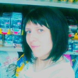 Юлия, 36 лет, Дмитров