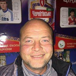 Александр, 44 года, Запорожье