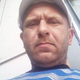 Сергей, 39 лет, Голованевск
