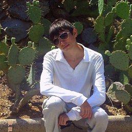 Сергей, 29 лет, Царичанка
