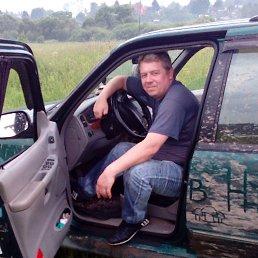 Андрей, 44 года, Верея