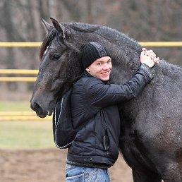 Alexander, 31 год, Кролевец