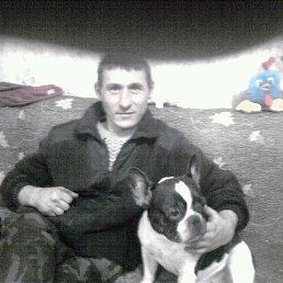 Роман, 31 год, Алтайское