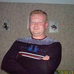 Алексей, 41 год, Воронеж