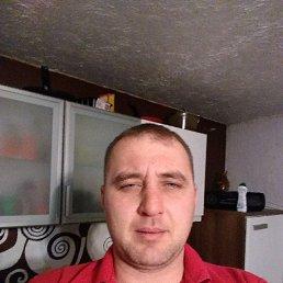 Aleksandr, 36 лет, Таллин