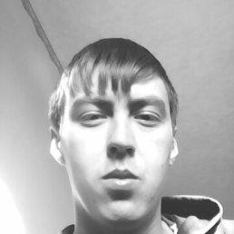 Николай, 26 лет, Каменск