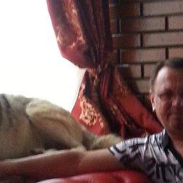 Александр, 52 года, Сургут