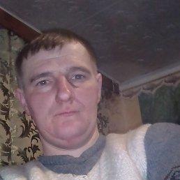 Евген, 29 лет, Славута