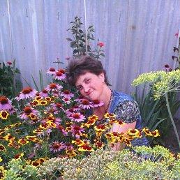 Елена, 49 лет, Благодарный