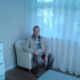 Михаил, 65 лет, Пироговский