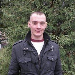 Сережа, 29 лет, Ахтырка