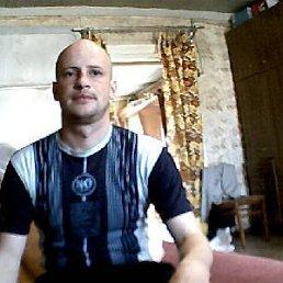 Дмитрий, 41 год, Хвалынск