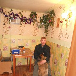 андрей, 40 лет, Луга