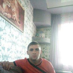 Сергей, 28 лет, Красногорский