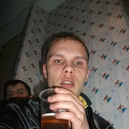 Дмитрий, 29 лет, Томское