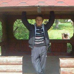 Лёша, 24 года, Красный Лиман