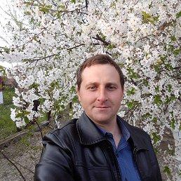 Владимир, 32 года, Вилково