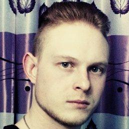 Илья, 29 лет, Покров