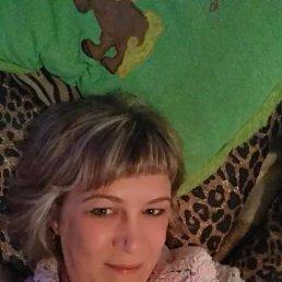 Елена, 37 лет, Волосово
