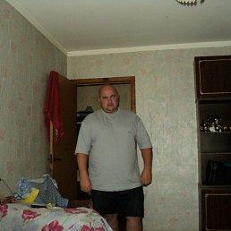 Николай, 41 год, Кесова Гора