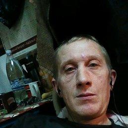 Сергей, 43 года, Малин