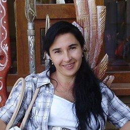 Екатерина, 41 год, Днепропетровск