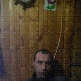 Роман, 41 год, Москва
