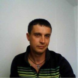 Василь Стецко, 47 лет, Дрогобыч