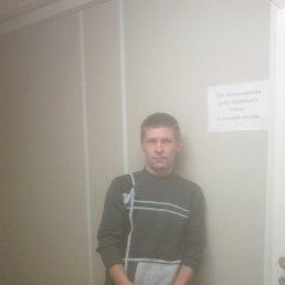 Илья, 33 года, Дубна