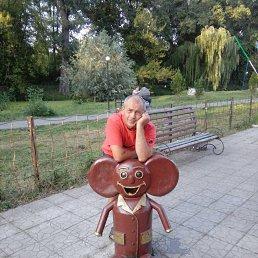 Гена, 49 лет, Ахтырка